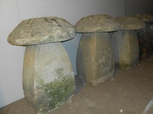 Staddle Stones 004